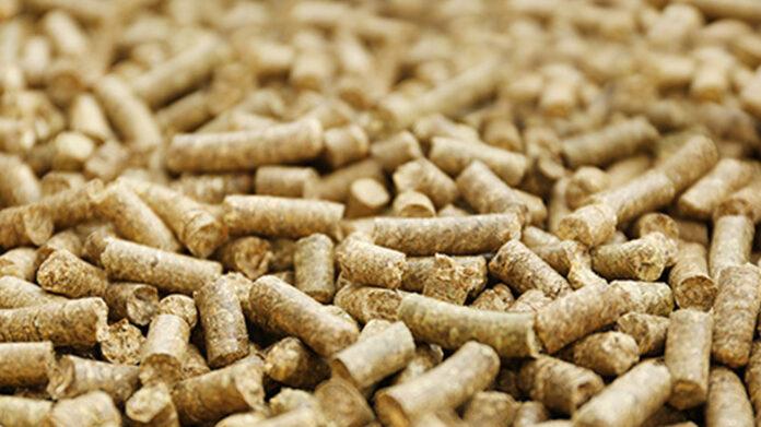 Perspectivas del mercado mundial de pellets de madera hasta 2025 - Europa es el mayor consumidor y productor de pellets de madera 1