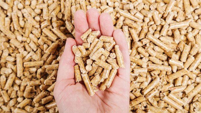 La demanda de pellet en Europa crecerá un 30-40% en los próximos cinco años 1